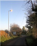 SX3258 : Lamp light, Trerulefoot by Derek Harper