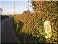 SX3258 : Milestone, Trerulefoot by Derek Harper