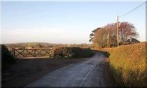 SX3258 : Lane to Bake Lane End by Derek Harper