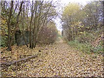 SO9298 : Leafy Railway Path by Gordon Griffiths