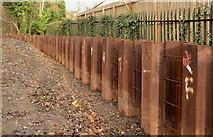 J3773 : Flood alleviation works, Orangefield Park, Belfast (11) by Albert Bridge
