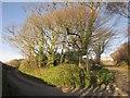 SX3555 : Junction for Tredis by Derek Harper