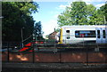TQ4566 : Train in sidings, Orpington by N Chadwick
