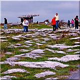 M2300 : Burren - Poulnabrone Dolmen - Distant View from Path by Joseph Mischyshyn