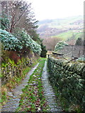 SE0023 : New Lane above Lower Brig Hey by Humphrey Bolton