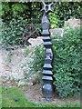 NT2575 : Millennium milepost by Richard Webb