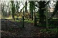 TQ3052 : Bridleway in Merstham, Surrey by Peter Trimming