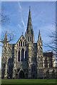 SU1429 : Salisbury Cathedral by Stephen McKay