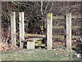 SK4625 : Stile on the footpath following the former A453 by Ian Calderwood