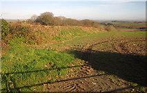 SX3258 : Field boundary near Bake by Derek Harper
