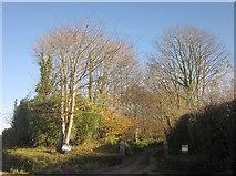 SX3258 : Entrance to Bake Manor by Derek Harper