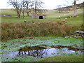 SJ1466 : Pond and Shelter west of Moel Arthur by Andy Waddington