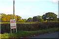 SP0775 : Pastures, hedgerow trees and roadside, Middle Lane, Wythall by Robin Stott