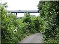 NZ3456 : Ferryboat Lane, North Hylton by Richard Webb