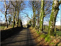 H3568 : Tattysallagh Road by Kenneth  Allen