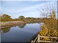 SU9180 : Downstream of Marsh Lane Weir by Des Blenkinsopp