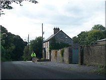 N8659 : A cyclist on the L4010 east of Bective Abbey by Eric Jones
