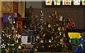 TQ3024 : Christmas Tree Festival, Holy Trinity, Cuckfield by nick macneill