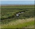 TF4750 : Tidal creek on the salt marsh by Mat Fascione