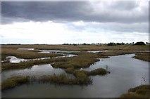 TQ9293 : Paglesham Creek marshes by John Myers