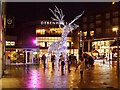 SD8010 : Christmas at The Rock by David Dixon