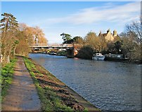 TL5064 : The bridge at Clayhithe by John Sutton