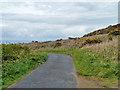 SW4839 : Lane to Trevega by Robin Webster