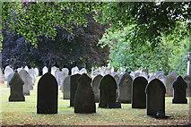 SK3736 : Nottingham Road Cemetery, Derby by Francis Dolman