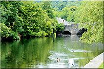 SD3686 : Newby Bridge by edward mcmaihin