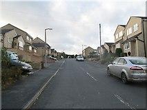 SE1321 : Mayster Grove - Field Lane by Betty Longbottom
