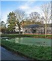 TL3044 : Abington Pigotts pond by John Sutton