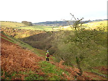 SK2274 : Coombs Dale side valley by Graham Cole