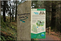 NX4465 : Kirroughtree Lade Information by Billy McCrorie