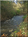 SS9287 : A glimpse of the River Ogmore near Pant-yr-awel by eswales