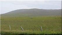 HU1757 : Fields, Huxter by Richard Webb