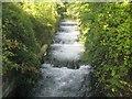 SU4621 : Itchen Navigation: Former Allbrook Lock by Nigel Cox