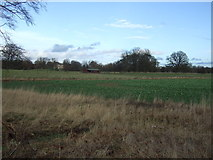 SE3953 : Crop field, South Park by JThomas