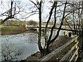 SN9985 : Dolwen bridge by Penny Mayes