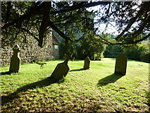 ST5906 : St Edwold, Stockwood: churchyard (1) by Basher Eyre