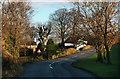 SJ9480 : Shrigley Road by Peter McDermott
