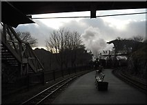 SH6441 : Tan-y-Bwlch Station by Christopher Hall