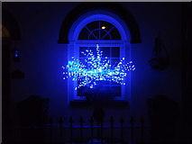 TQ7668 : Blue Christmas Lights by David Anstiss