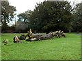 TQ4177 : Fallen tree in Charlton Park (1)  by Stephen Craven