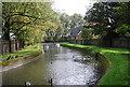 TQ3192 : New River by N Chadwick