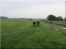 TQ1913 : Riders on bank of River Adur by Peter Holmes