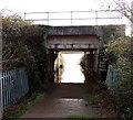 ST3290 : Flooding under and behind a railway bridge in Caerleon by Jaggery