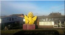 TA0827 : Hot Tub Showroom, Hull by Derek Harper