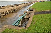 J3979 : Flooded path, Holywood (1) by Albert Bridge
