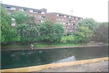 TQ3681 : Regents Canal by N Chadwick