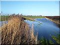 SU4395 : Footpath Under Water by Des Blenkinsopp